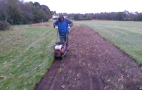 Turf-cutting to expose buried heather seed